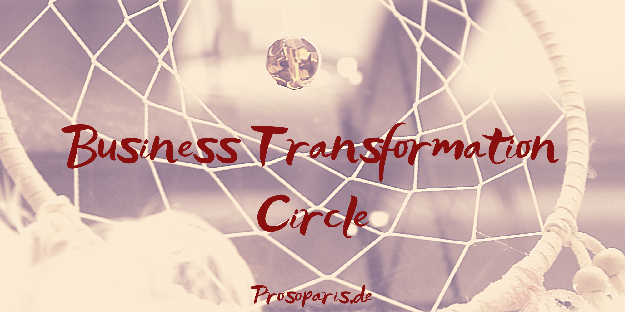 Busieness Transformation Circle, Theorie U, Petra Prosoparis, Wandel, Transformation, Change