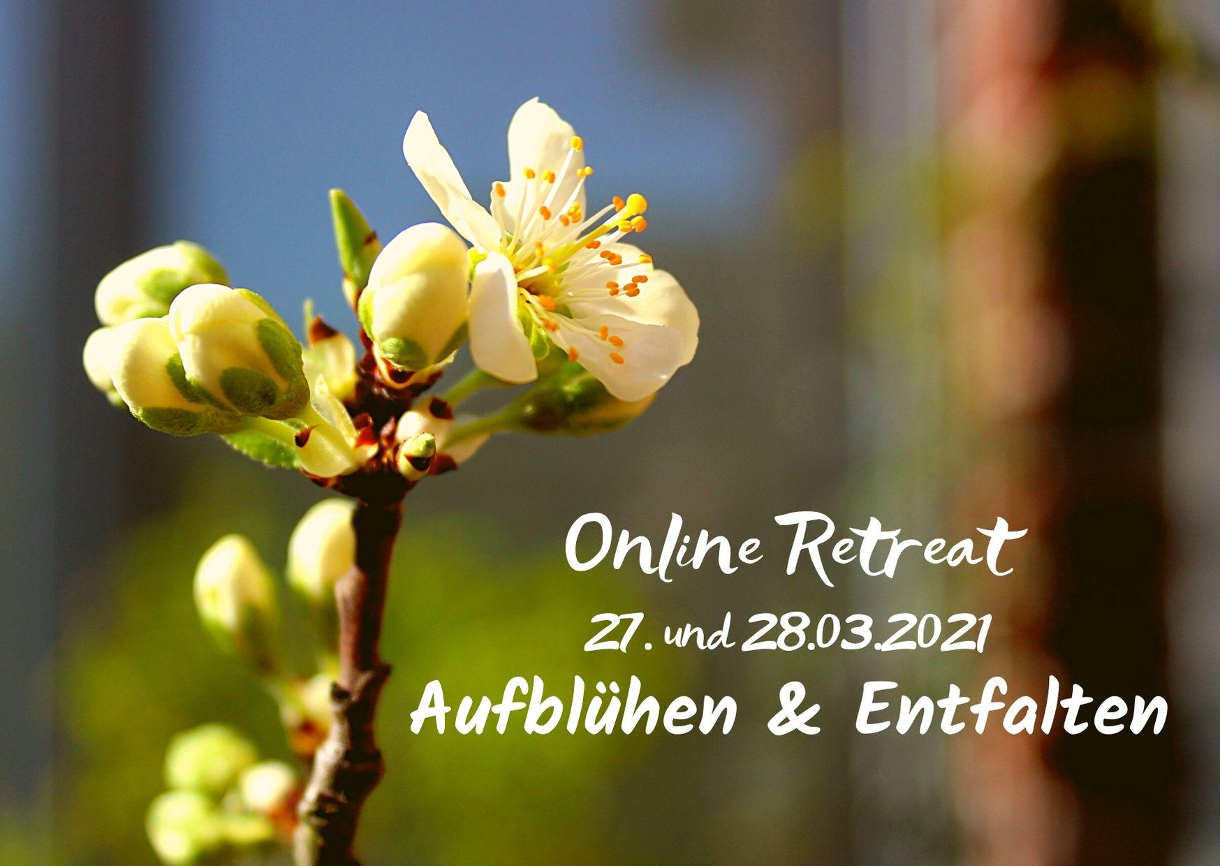 Theory U Online Retreat Aufblühen Entfalten, Petra Prosoparis